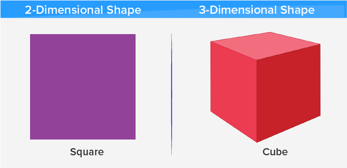 two and three dimensional
