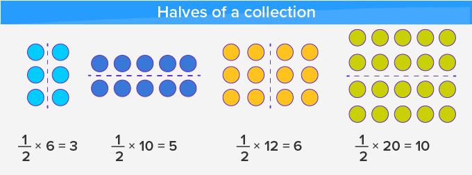 properties of halves 1