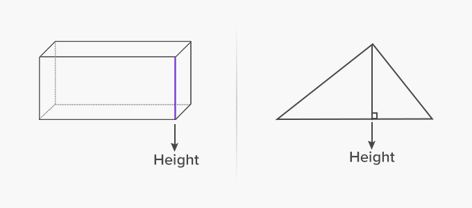 height of the rectangular prism and triangle