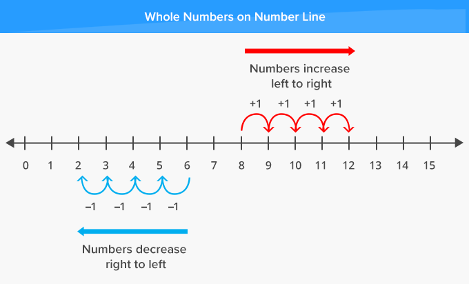 Whole real Numbers on a number line