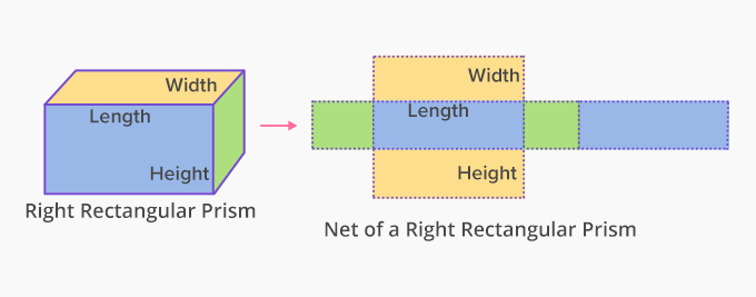 net of a rectangular prism
