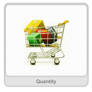 Quantity Worksheet